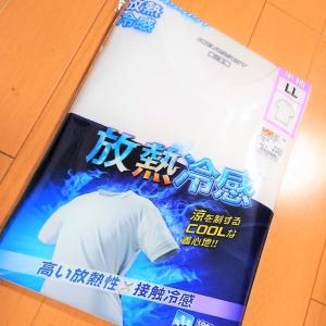 【ワークマン】1枚499円!?「放熱冷感半袖Tシャツ」のコスパが良すぎる!