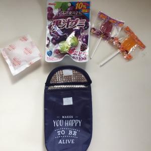 【キャンドゥ】の「保冷ポーチ」に入れて持ち歩けば夏でもお菓子が溶けない!これは便利すぎる~♡