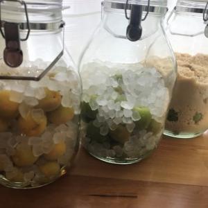 【料理講師直伝】「作るなら今!」梅シロップの作り方!3タイプのレシピを紹介