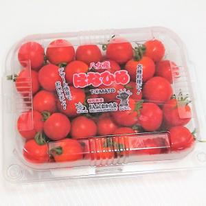 【コストコ】の「はなひめトマト」はコスパも良くてトマト嫌いの子どもでも食べられる!?