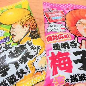 【ダイソー】「道明寺梅子の恋の挑戦状」と「早乙女檸檬の挑戦状」という謎のキャンディを買ってみた