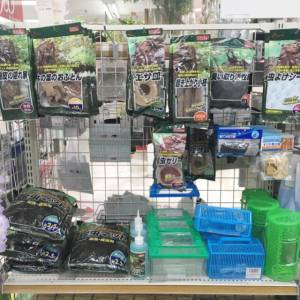 【キャンドゥ】の昆虫飼育セットが予想以上に種類豊富で便利!