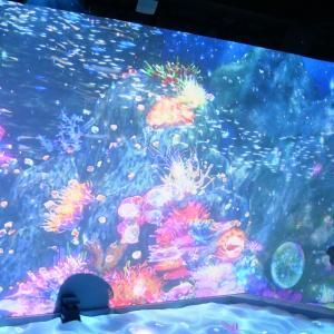 横浜アソビルで開催中!体験型デジタルアート「オーシャン バイ ネイキッド 光の深海展」に行ってみた!