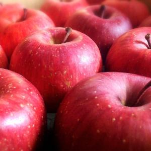 「りんご」を新鮮に長持ちさせる裏ワザ!その秘密はラップ使いにアリ!【栄養士監修】