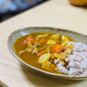 【テレビ番組のレシピをお試し】おでんのだしで作る「和風カレー」が簡単過ぎた、ウマ過ぎた!