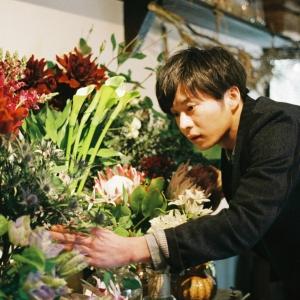 映画『mellow』の田中圭はお花屋さん!癒し系イケメンを演じて全国の女子をメロメロにします!
