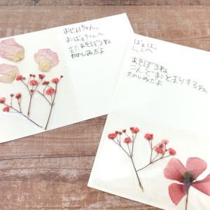 たった30秒で「押し花」ができる!?子どもと一緒に押し花アートの手紙を作ってみた!