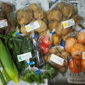"""食育と""""究極の時短""""を叶える!美味しい野菜が旬の時期に届く「ゴヒイキ」とは"""