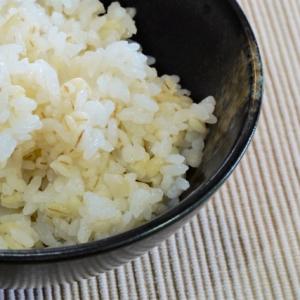 食物繊維は白米の4倍!?「もち麦」で普段のごはんを変えよう!白米とのベストバランスを探ってみた