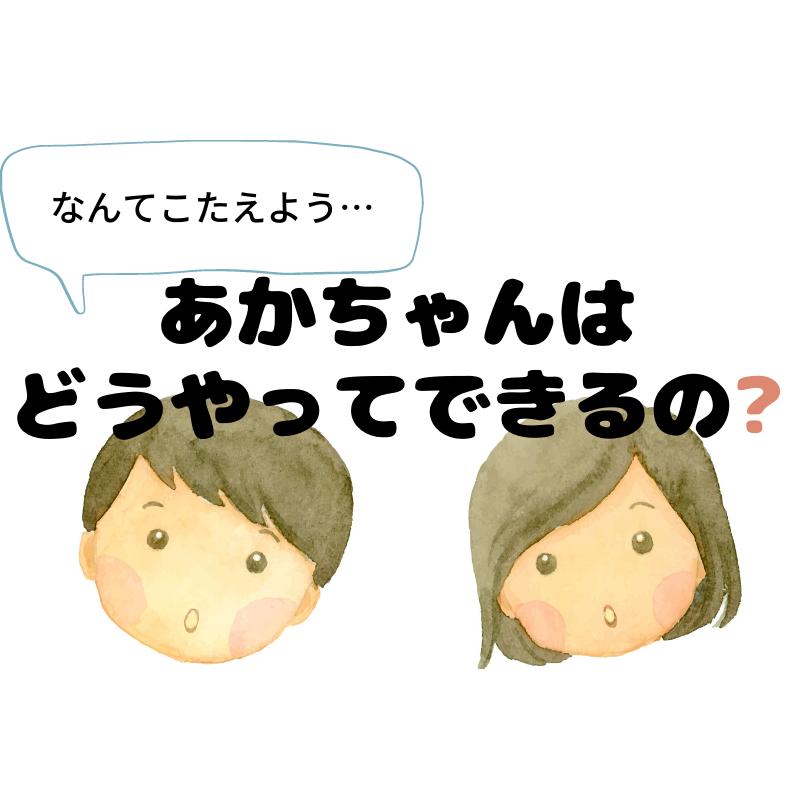 【助産師に教わる性教育③】実践編!「赤ちゃんはどうやってできるの?」にどう答える?