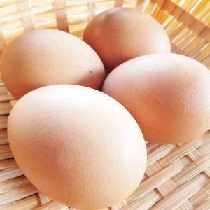 「卵かけご飯」の変化形が美味しすぎる!卵かけご飯アレンジレシピは○○をトッピング