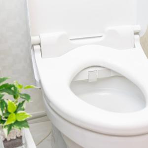 トイレにこもりがちなニオイ…忘れがちなフィルターを掃除すれば解消できる【タスカジさんに聞く!週末小掃除テクニック】