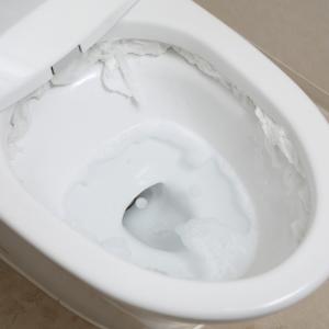 """トイレの便器はこする必要なし!全く疲れない""""放置するだけ""""掃除術【タスカジさんに聞く!週末小掃除テクニック】"""