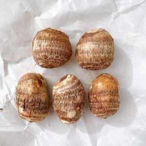 里芋を選ぶときは注目すべき場所は?おいしい里芋の見分け方と保存方法#野菜ソムリエいけごまの知恵袋