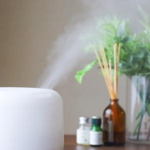 湿度を上げると体感温度がアップする! 上手な加湿器の選び方とケアを伝授!#家電マメ知識5