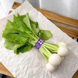 よいカブの見分け方と保存方法!おいしく食べるため買ってすぐやることは?#野菜ソムリエいけごまの知恵袋