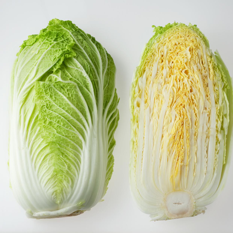 白菜の選び方と保存方法 #野菜ソムリエいけごまの知恵袋