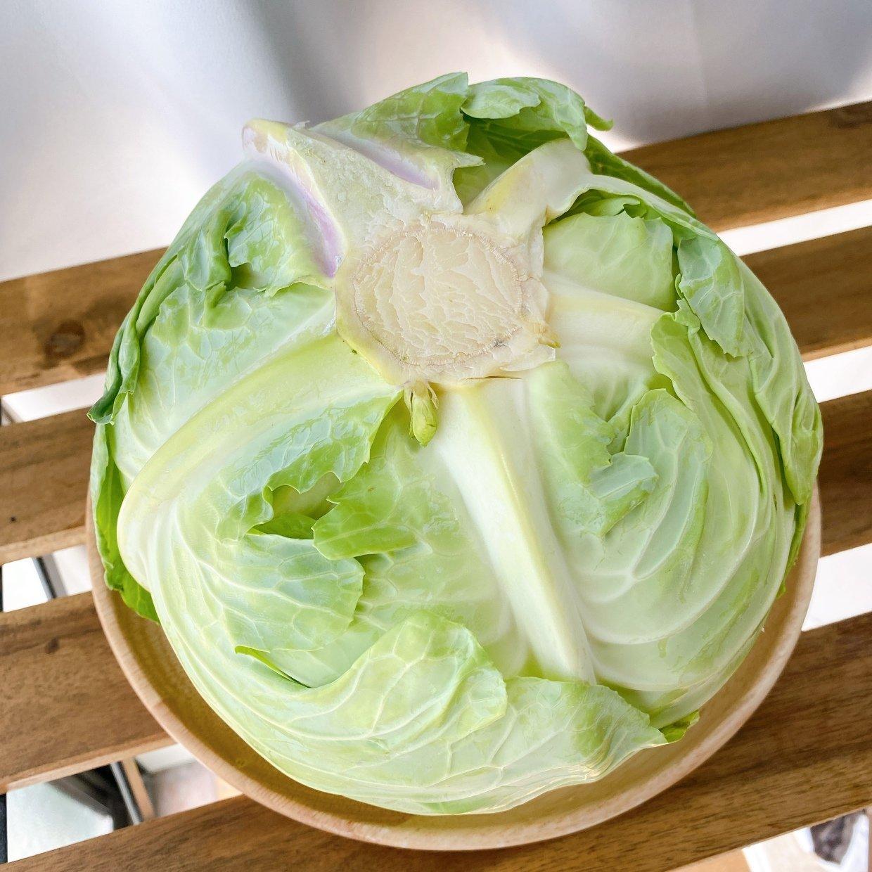 キャベツの選び方と保存方法!鮮度の見極めは切り口で!#野菜ソムリエいけごまの知恵袋