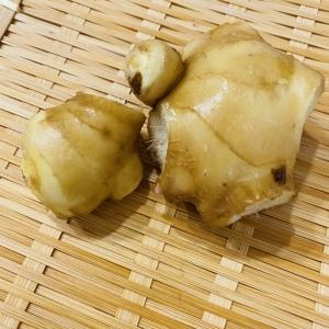 野菜室に痛んだ使いかけ生姜余ってない?「冷凍すりおろし」「刻み」「シロップ漬け」丸ごと生姜の使い切り法