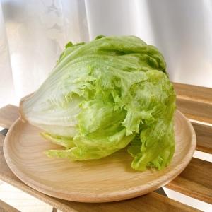 シャキシャキレタス、実は冷凍保存法できるって知ってた?#野菜ソムリエいけごまの知恵袋
