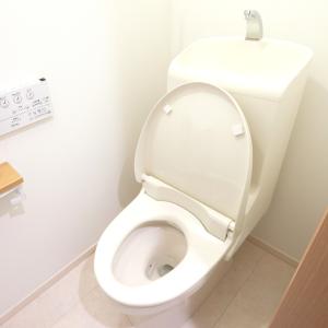 """「使うたび」がポイント!すぐに汚れるトイレが""""短時間でピカピカになる""""時短掃除術"""