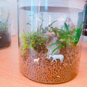 小さなの観葉植物【苔テラリウム】は簡単に作れて育て方もラクチン!おうち時間に癒しにいかが?