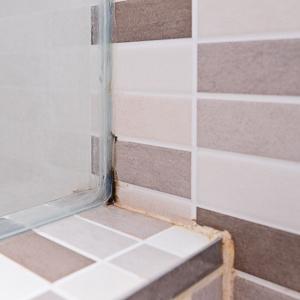 """掃除してもすぐカビる…水回りのカビ予防には""""貼っておくだけ""""の簡単カビ予防法が効く"""