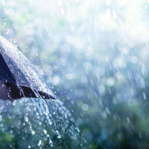 濡れた傘が乾かない!【傘の撥水効果がすぐに戻る2つの方法】買い替えるのはちょっと待って!