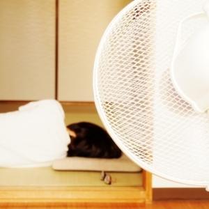 """「朝起きると暑さでボーっとする…。」寝たまま""""夏バテ解消ヨガ""""3選#ヨガインストラクターが教える"""