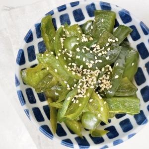 【5分で作る簡単副菜】材料はピーマンだけ!お弁当にピッタリ!ささっと作れるピーマンレシピ