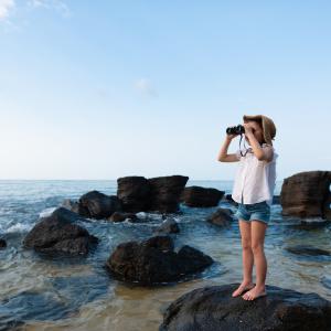 【子どもの自由研究に】ペットボトルで簡単に捕まえられる「海蛍」!捕まえる場所や捕まえ方は?