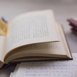 50歳目前。読書しようと思ったら集中できなくなっていたことに愕然としたが、そこで新しい発見もあった…という話。
