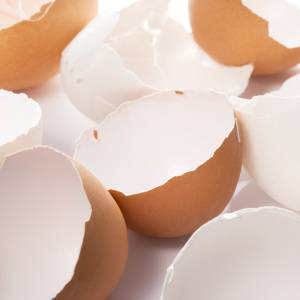 「卵の殻」捨てたら損!捨てる前に使い倒す「3つの活用アイデア」