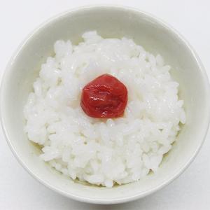 おいしいご飯は保存場所で決まる! お米を〇〇に保存するとおいしさ長持ちするって知ってた?