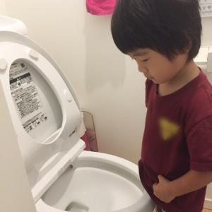 アメトークでも紹介された! 絶対欲しくなるトイレ掃除の便利グッズ4選